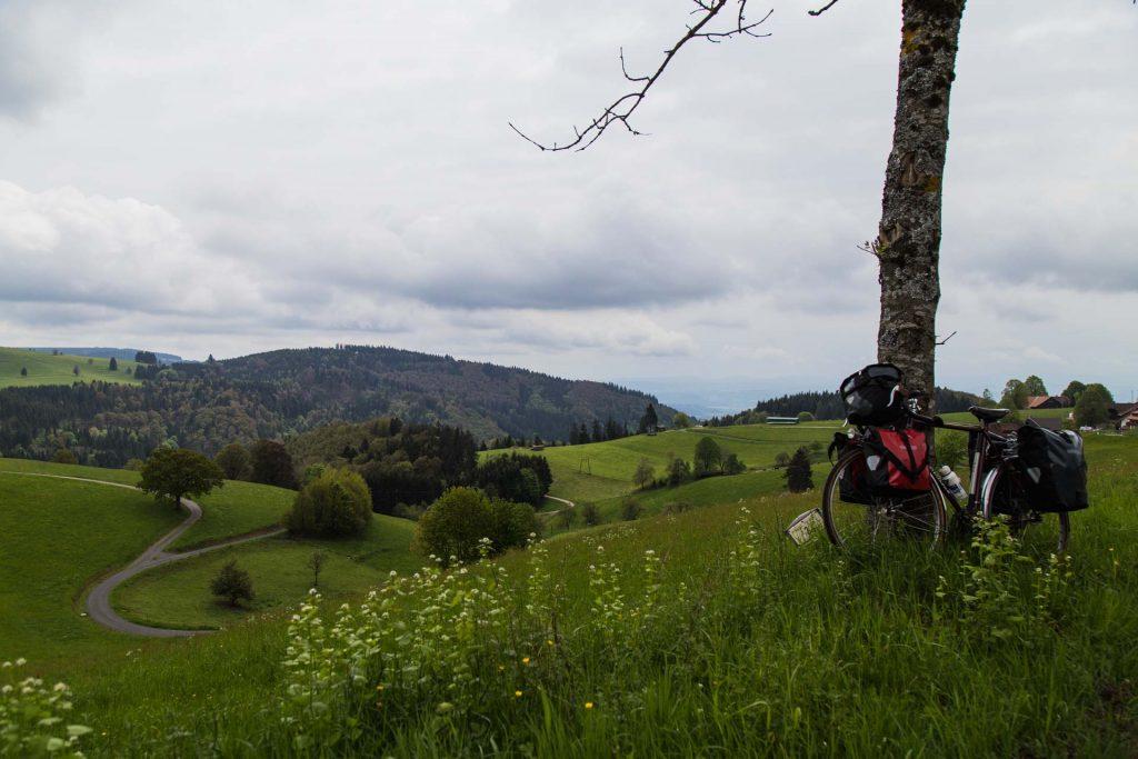 aurelia-brivet-foret-noire-collines